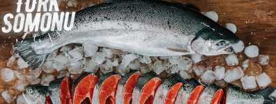 Hayvansal mamuller sektöründe 604 milyon dolarlık ihracat